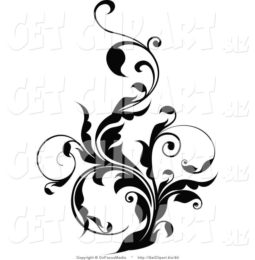 Vine Designs Art : Royalty free vine stock get designs