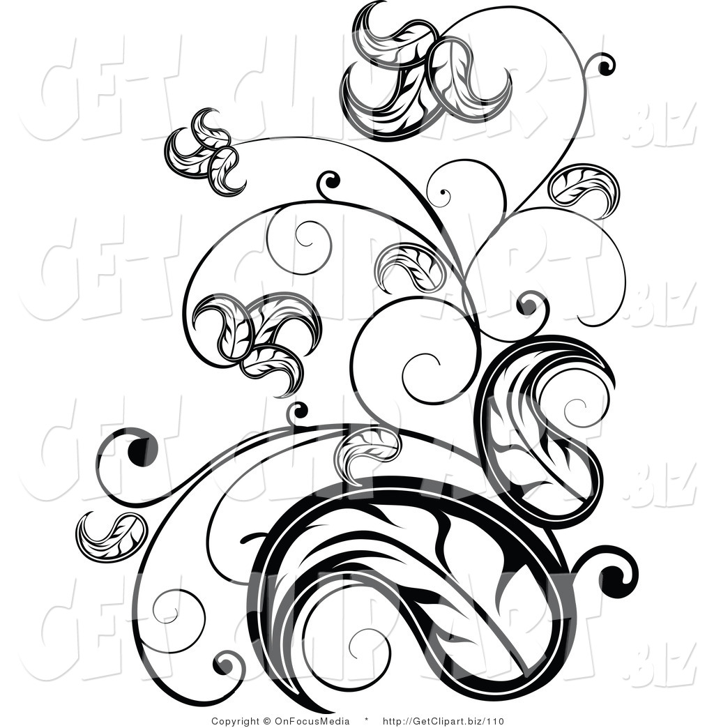 Clip Art of an Elegant Black and White Leafy Vine Scrolling Design ...