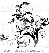 Clip Art of a Black and White Curly Plant Flourish Design Accent Growing up by OnFocusMedia