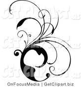 Clip Art of a Black and White Scrolling Design Vine by OnFocusMedia