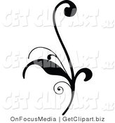 Clip Art of a Delicate Black Silhouetted Elegant Leafy Scroll Design Growing up by OnFocusMedia