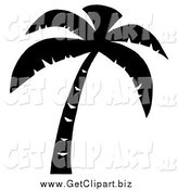 Clip Art of a Palm Tree Silhouette by Hit Toon