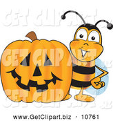 Clip Art of a Smiling Bee Mascot Cartoon Character with a Carved Halloween Pumpkin by Toons4Biz