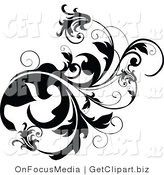 Clip Art of a Thick Black Vine Flourish with Curly Tendrils and Flowers Growing Right by OnFocusMedia