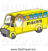 Clip Art of a Tiger Mascot Driving a School Bus by Toons4Biz