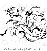 Clip Art of an Elegant Black and White Floral Scroll Design Element on White by OnFocusMedia