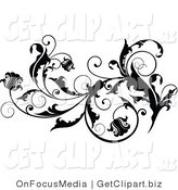 Clip Art of Floral Blooms on a Thick Black Vine Flourish with Curly Tendrils Flowing Right by OnFocusMedia