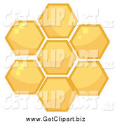 Clip Art of Honey Combs by Hit Toon