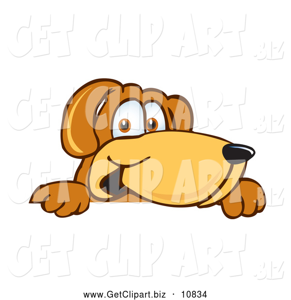 Clip Art of a Happy Brown Dog Mascot Cartoon Character Peeking over a Surface
