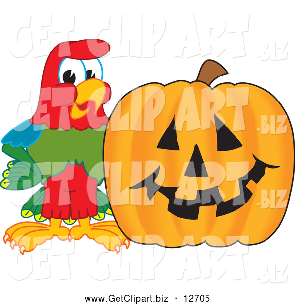 Clip Art of a Macaw Parrot with a Pumpkin