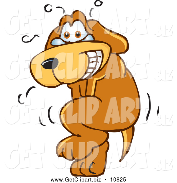 Clip Art of a Nervous and Sweating Brown Dog Mascot Cartoon Character Trying to Hold It In, but Has to Go Pee