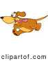 Clip Art of a Grinning Brown Dog Mascot Cartoon Character Running Obsessively After Something by Toons4Biz