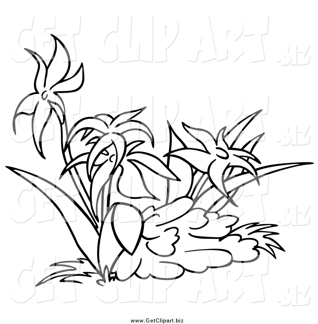 Royalty Free Stock Get Designs Of Flowers