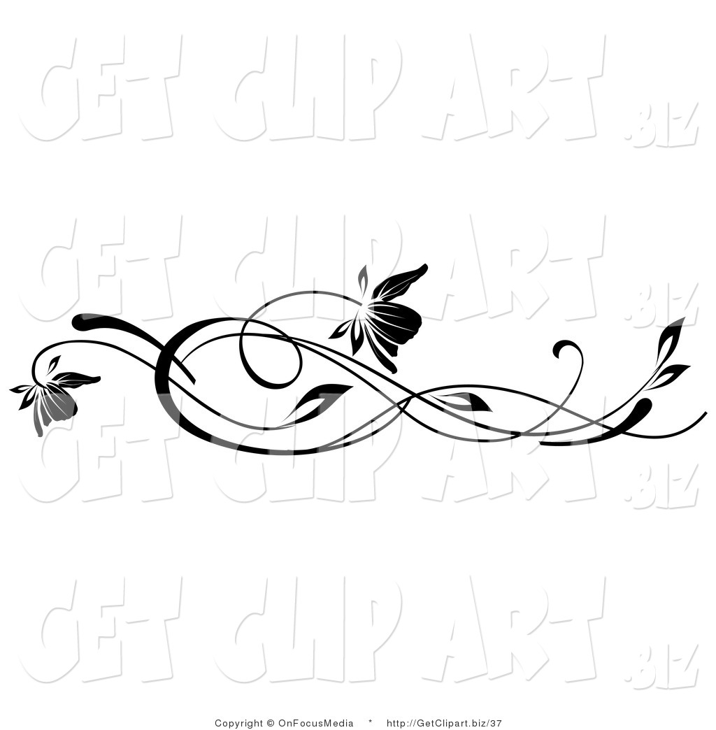 Flower Vine Line Drawing : Royalty free stock get designs of flowers